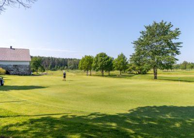 Golfkuja_7_golfkenttä